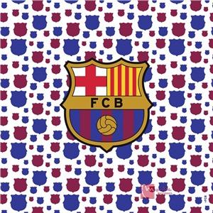 Cortina baño fc barcelona